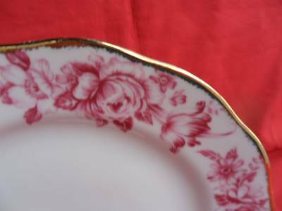 """Royal Albert, Paradise (Red) 1 x 10.5"""" Dinner Plate REDUCED!"""