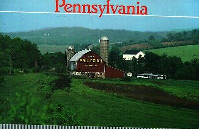 "Pennsylvania Postcard  --   Barn Advertisements - ""Chew Mail Pouch Tobacco"""
