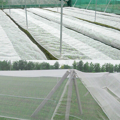 1M X 50M BLACK GARDEN NETTING Crop//Plant//Seed//Allotment//windbreak//insect net
