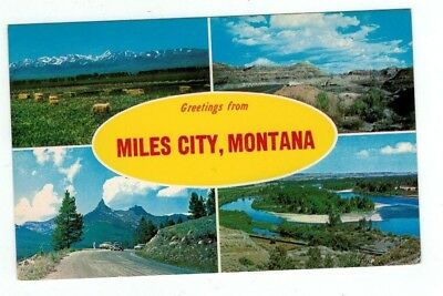 "MT Miles City Montana vintage post card ""Greetings from Miles City"""