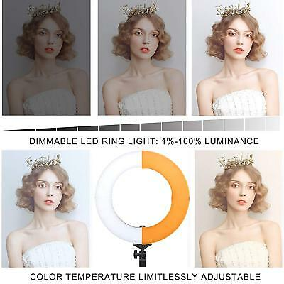 ZoMei 14-inch Ring Light Lighting Kit with Light Stand, Ball Head for Portrait