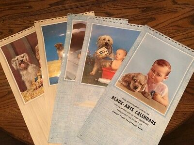 Lot Of 5 KLM calendar Topper Photos Kids And Dogs Beaux Arts Lot 3