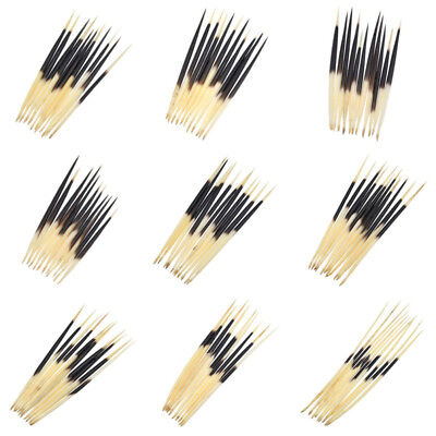 10 Pcs Porcupine Quills Handwork Hairpin Stick Hair Craft Fishing Bobber DIY