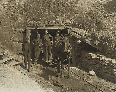 "Mining photograph, Entrance, MULE, Young miners, antique , Coal, 20""x16"""