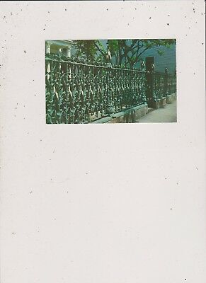Cornstalk Fence-New Orleans Post Card-2