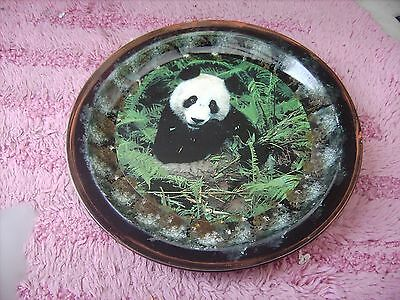 Panda    On A Decoupage  Plate