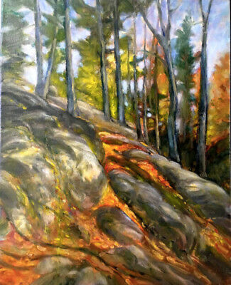 Adirondack Woodland New York  20x16 in.Oil on stretched canvas Hall Groat Sr.