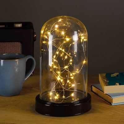 Glass LED Display Cloche Bell Jar Dome Black Base & Fairy Lights Ornament Timer