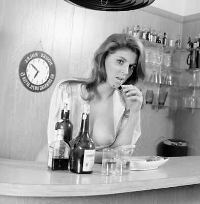 1960s Vogel Negative, busty nude pin-up girl Diane Potter behind bar, t36900