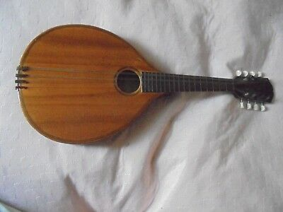 8 String 17 Fret Mandolin Sold By The International College Of Music Only