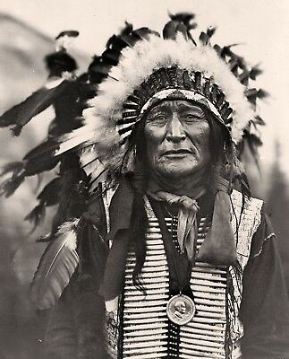 "1908 PHOTO, SIOUX, Native American Indian, Portrait, Bone Necklace, 20""x16"""