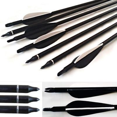 10pcs 30'' Fibreglass Carbon Grade Archery Arrow Screw Tip Broadhead Compatible