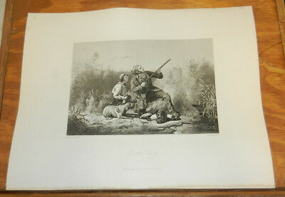 1856 Antique Print//ON THE WING