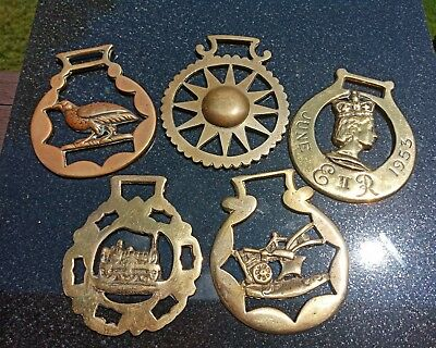 Five Antique Brass Draft Horse Parade Medallions Harness Ornaments