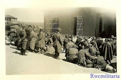 WAR IS OVER! German Panzermen & Soldiers w/ Captured Greek POW's; 1941!!!