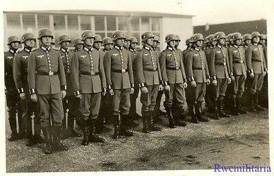 Port. Photo: ATTENTION! Wehrmacht Truppe Lined Up in Waffenrock Uniforms!!!