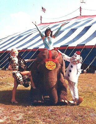 1985 - Clyde Beatty - Cole Bros Circus Publicity Photo