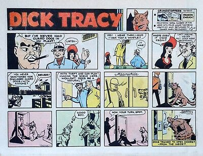 Dick Tracy by Chester Gould - large half-page color Sunday comic, April 9, 1972