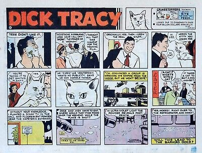 Dick Tracy by Chester Gould - large half-page color Sunday comic, April 16, 1972