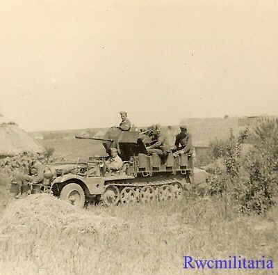 EXCELLENT! German SdKfz 10/2 2cm Flak Halftrack in Field; Russia!!!