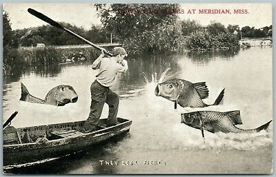 Meridian Miss. Fishing Exaggerated Antique Postcard