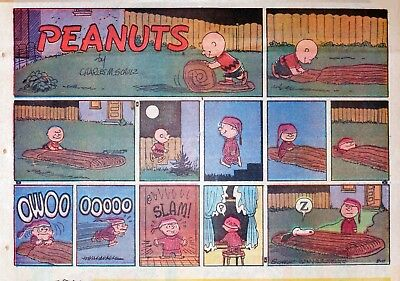 Peanuts by Charles Schulz - large half-page color Sunday comic - August 11, 1957