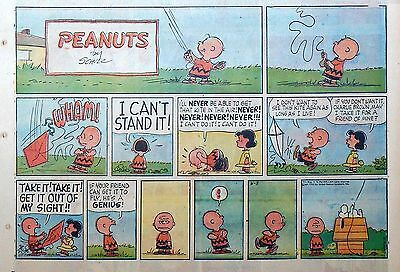 Peanuts by Charles Schulz - large half-page color Sunday comic - June 3, 1962