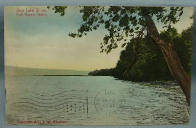 Bear Lake Shore Fish Haven Id 1911   Postcard 3X