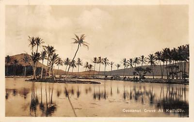 Rppc Cocoanut Grove At Kuliouou Hawaii Real Photo Postcard 1935