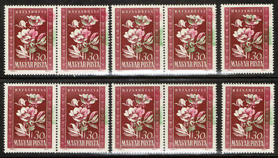 Hungary Scott#906 Mint Never Hinged Group Of All Color Shifts Error
