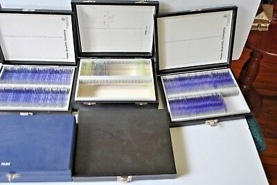 Vintage microscope slide lot approx 300