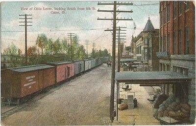 Cairo, IL Illinois 1909 Postcard, Ohio River Levee and Train