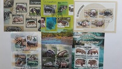 25 Different Hippopotamus on Stamps Collection