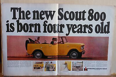1965 double page magazine ad for International - Scout 800, Born four years old