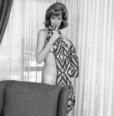 1960s Ron Vogel Negative, gorgeous nude pin-up girl Holly Debson, t207569