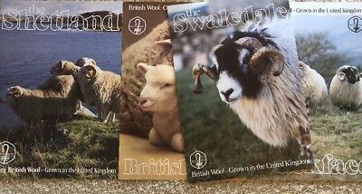Vintage British Wool  Photo Poster Pictures Lambs Sheep 19x28 Lot Of 4