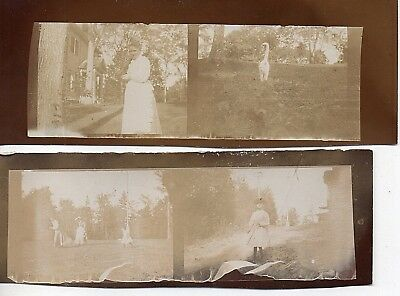 52588 (4) Photos ca 1900 Hyde Family of NYC East Windsor CT Warehouse Point