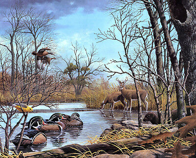 Wall art Canvas HD Print Oil Painting Forest animals printed on canvas L831