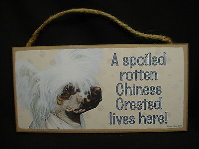 CHINESE CRESTED A Spoiled Rotten DOG SIGN wood HANGING WALL PLAQUE puppy USA