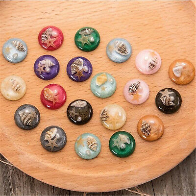 5x Natural Shell Starfish Round Flatback Resin Cabochons for Dome Cameo Settings
