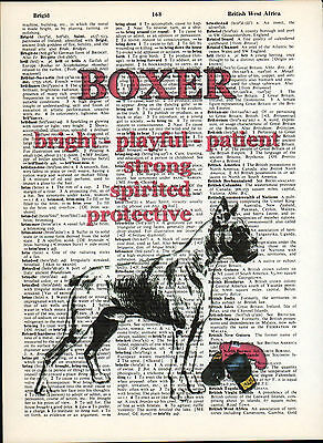 Boxer Dog Traits Altered Wall Art Print Upcycled Vintage Dictionary Page