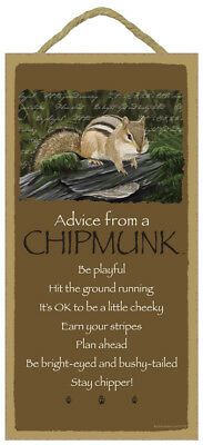 ADVICE FROM A CHIPMUNK wood INSPIRATIONAL SIGN wall NOVELTY PLAQUE Animal USA