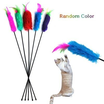 Funny Pet Toys Cat pet cat toys for cats scratching Playing Training Pet