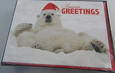 box of polar bear national geographic christmas cards glitter 18 cards - National Geographic Christmas Cards