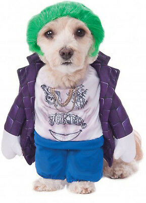 The Joker Jared Leto Suicide Squad Pet Dog Cat Halloween Costume