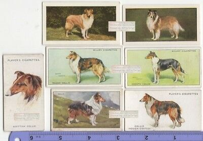 Collie Dogs 7 Different Vintage Ad Trade Cards 2nd