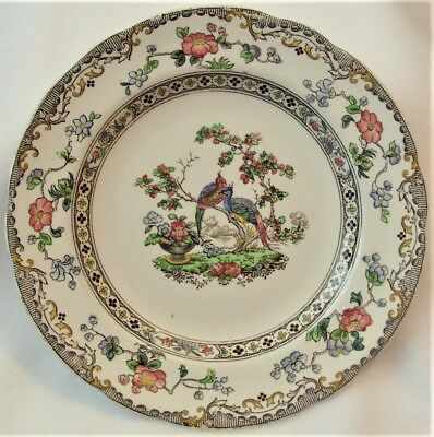 Antique 1913 Copeland Late Spode Side Plate Oriental Pheasant Rd No. 615911