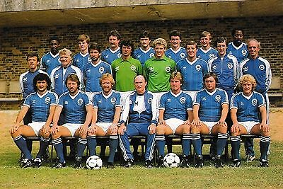 Brighton & Hove Albion Football Team Photo 1982-83 Season
