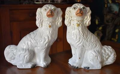 Handsome Antique English Staffordshire Pair Of White Spaniels
