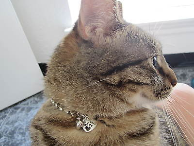 Cat Rhinestone Necklace With Best Friend Heart Charm & Free puff heart charm